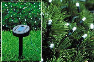 Advantages Of Solar Powered Christmas Lights: LED, Outdoor & Indoor